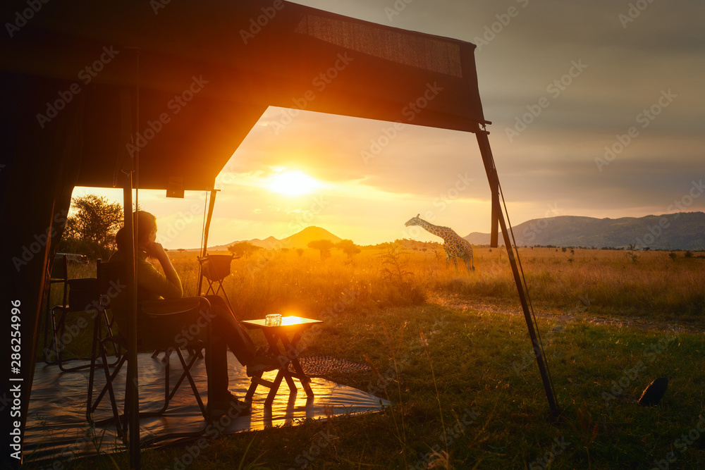 Fototapeta Woman rests after safari in luxury tent during sunset camping in African savannah of Serengeti National Park,Tanzania.