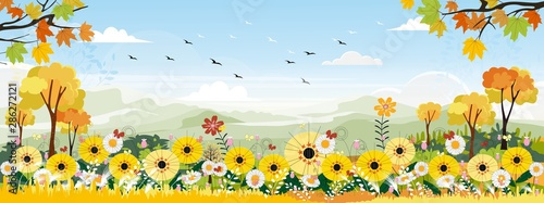 Foto auf Leinwand Pool Cute cartoon panorama landscape of Sunflower field and butterfly flying with blue sky background, illustration of beautiful natural landscape of flowers farm field in green and yellow foliage.
