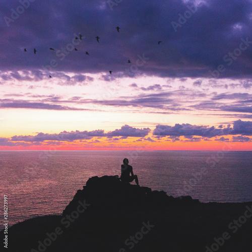 Fotobehang Pier una persona sola contempla il tramonto, un sognatore guarda uccelli volare