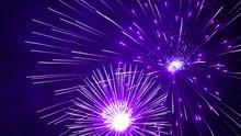 Purple Firework In The Night S...