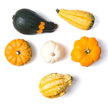 Decorative Mini Pumpkins Isolated On White Background, Top View