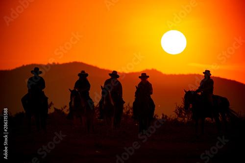Foto auf Leinwand Schwarz cowboy riding horse against sunset
