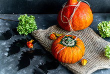 Halloween Pumpkins Lie On Burlap, Next To Dry Greens. On A Dark Background Are Flowers Of Physalis. Withered Black Bats Cut Out Of Paper. Have A Nice Holiday.