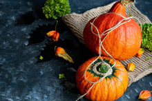 Halloween Pumpkins Lie On Burl...