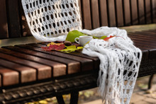 Small Cup Of Coffee With Foam, White Knitted Shawl, Dry Colorful Fallen Leaves And A Chestnut On Wet Wooden Bench In Autumn