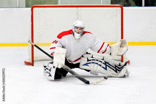 Hockey Goalie During a Game Wallpaper Mural