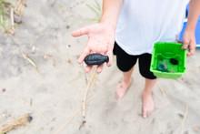Boy Holding Plastic Grenade On...