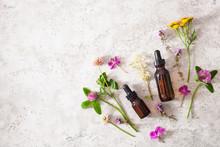 Medical Flowers Herbs Essentia...