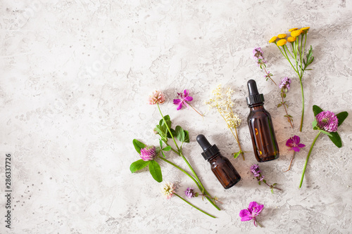 medical flowers herbs essential oils in bottles Canvas Print