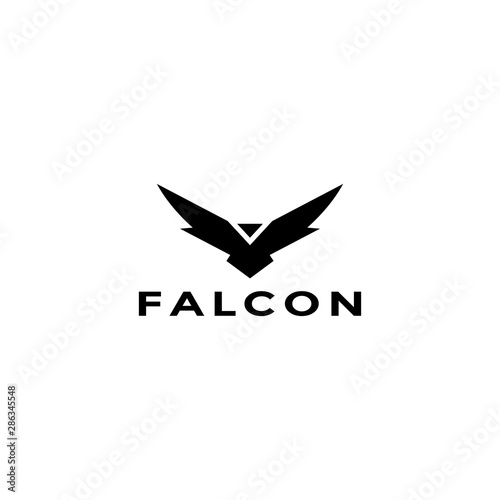 Photo Eagle logo vector design, falcon logotype template, hawk illustration