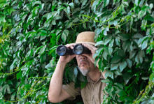 Traveler Looks Through Binoculars In The Leaves
