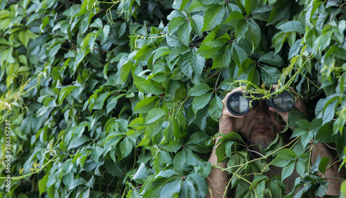 Fotomural man looks through binoculars in the leaves