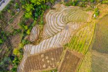 Rice Terraces, Cabagna-an Mans...