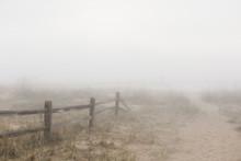 Foggy Beach At Morning
