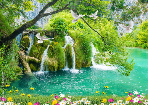 Poster Forest river 3d nature waterfall and sea tree wallpaper