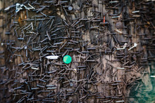 Staples On An Old Telephone Pole With One Green Thumbtack Standing Out Different From Everything