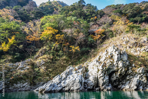 Trees and stone in a wedge shape next to a deep green river with striations and Canvas Print