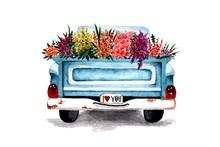Car Pickup With Flowers In The...