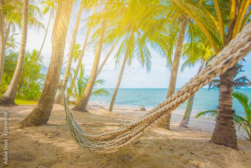 Obraz Kokosowe drzewa przy plaży - fototapety do salonu