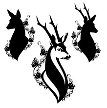 Elegant Roe Deer Head Among Wild Rose Flowers And Butterflies - Male And Female Animal Black And White Vector Design
