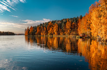 Autumn Lake View
