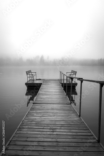 tranquil-and-foggy-lake-black-amp