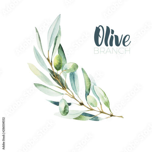 Canvas Print Watercolor olive branch