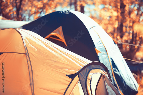 Poster Camping tourist tent inside summer forest / summer holidays in the forest, tent inside view, camping