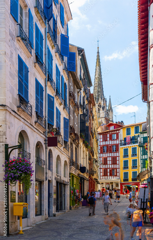 Fototapety, obrazy: Cityscape of French town Bayonne