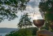 canvas print picture - Ein glas roter wein mit Sonnenuntergang als Sundowner im Sommer