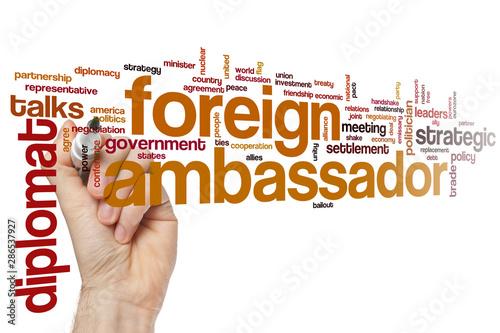Foreign ambassador word cloud Canvas Print