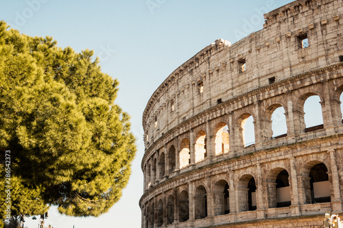 Obraz na plátne  The Coloseum in Rome with beautiful dusk colours