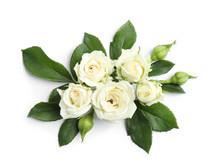 Beautiful Blooming Rose Flower...