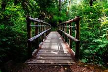 Wide Shot Of A Wooden Bridge S...