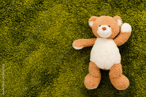 obraz dibond Top view of plush brown bear on green soft carpet