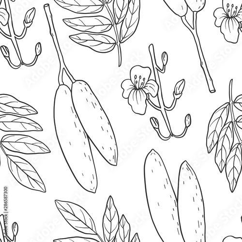 Seamless pattern of Kigelia africana (sausage tree). Wallpaper Mural