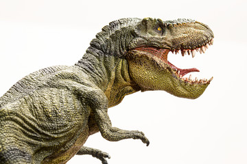 Tyrannosaurus rex dinosaur isolated model on white background