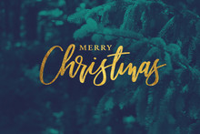 Gold Merry Christmas Script With Duotone Evergreen Branches Background