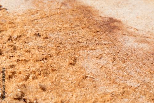 Texture di legno Tapéta, Fotótapéta