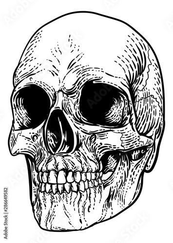 Photo  A skull graphic
