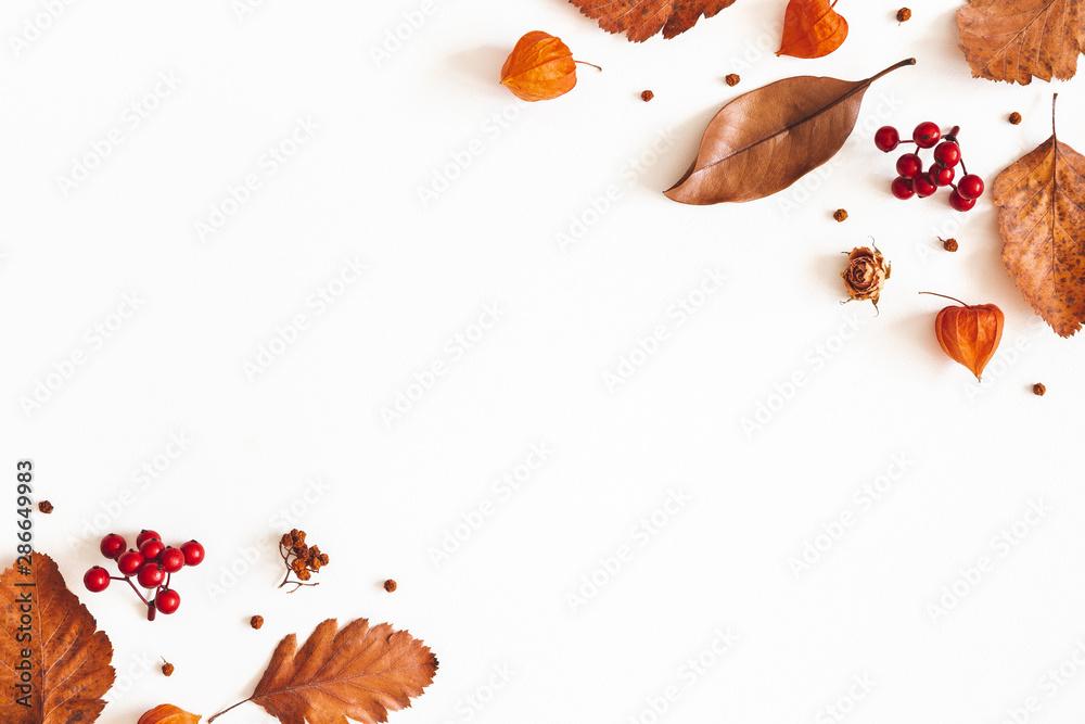 Jesienna kompozycja. Suszone liście, kwiaty, jagody jarzębiny na białym tle. Jesień, jesień, koncepcja Święto Dziękczynienia. Leżał płasko, widok z góry, miejsce <span>plik: #286649983 | autor: Flaffy</span>