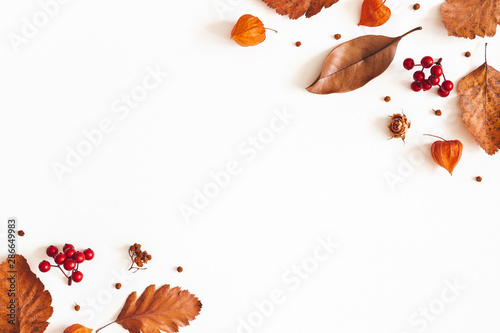 Obraz Autumn composition. Dried leaves, flowers, rowan berries on white background. Autumn, fall, thanksgiving day concept. Flat lay, top view, copy space - fototapety do salonu