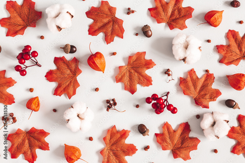 Fototapety, obrazy: Autumn composition. Pattern made of flowers, maple leaves on gray background. Autumn, fall, thanksgiving day concept. Flat lay, top view