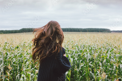 Beautiful carefree long hair asian girl in knitted sweater from behind in the autumn corn field Fototapete