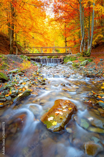 Foto auf Gartenposter Herbst Autumn landscape - Old wooden bridge fnd river waterfall in colorful autumn forest park with yellow leaves