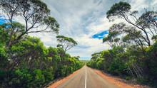Winding Road Through Kangaroo Island Bushland