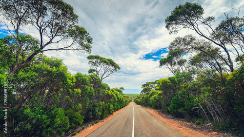 Stampa su Tela  Winding road through Kangaroo Island bushland