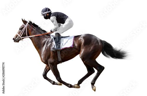 horse jockey racing isolated on white background Canvas Print