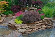 The Pond Area In An Aquatic Garden And Planted Rockery And Selection Of Flowers, Shrubs And Grasses