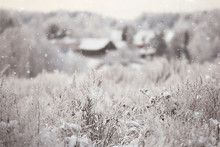 Winter In The Russian Village / Winter Landscape, Forest In Russia, Snow-covered Trees In The Province